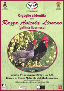GallinaLivorno_locandina_2017_uff_stampa