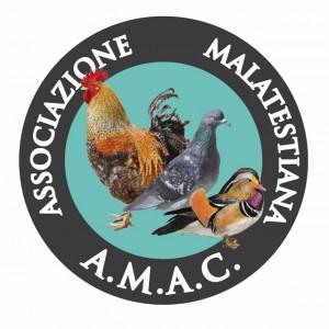 logo AMAC (640x640)