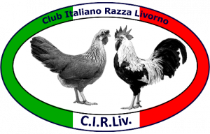 logo-livorno-club