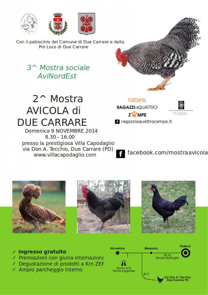 flyer_stampa_avicola 2014