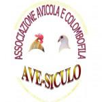 logo associazione Ave-Siculo