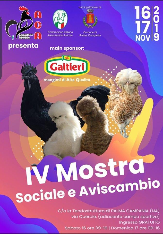 Mostra Sociale A.C.A. 16.11.2019