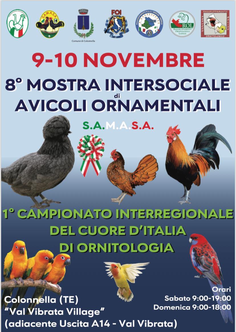 Mostra Intersociale S.A.M.A.S.A. 09.11.2019