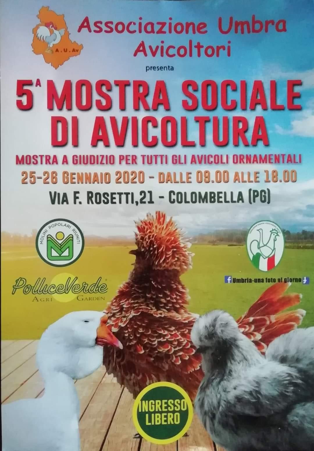Mostra Sociale A.U.Av. 25.01.2020